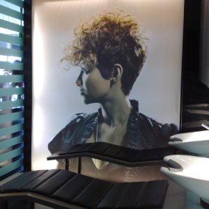 Lightboxes 5